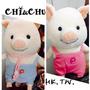 CHI奇&CHU朱