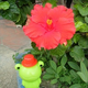 創作者 温蛙蛙 的頭像