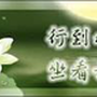 jhen33333林鳳兒