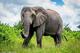 創作者 紓困貸款利率 的頭像