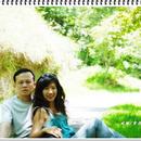 Lily 圖像