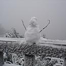 傅鴻雪 圖像