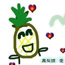 鳳梨頭 圖像