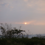 mumudada