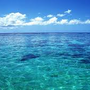 oceanhui