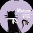 Meteor Juan