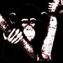 猿屋創作力工作坊
