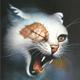 創作者 雀星.幻化成貓 的頭像
