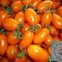 美濃橙蜜香蕃茄園